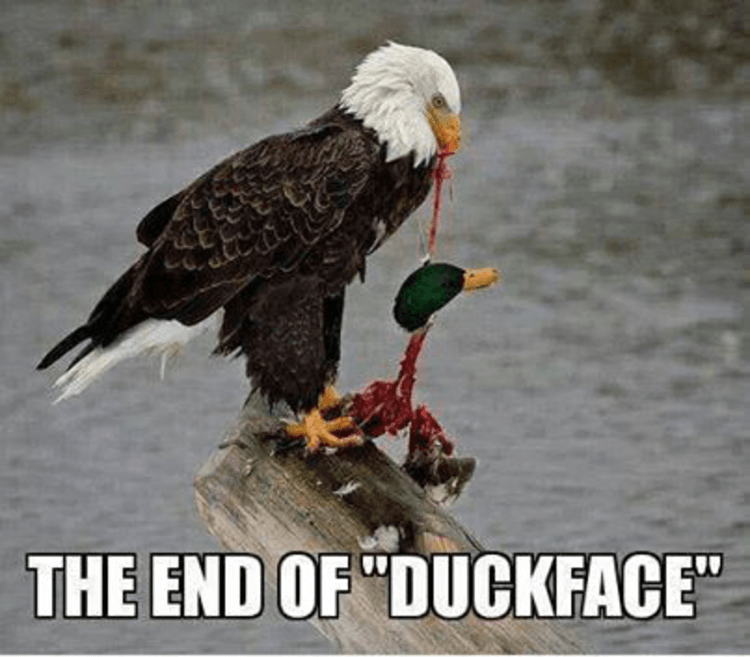 Duck face hunting meme - photo#14