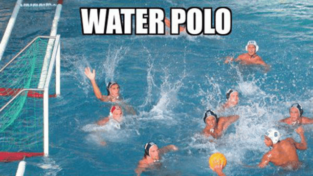water polo this i believe
