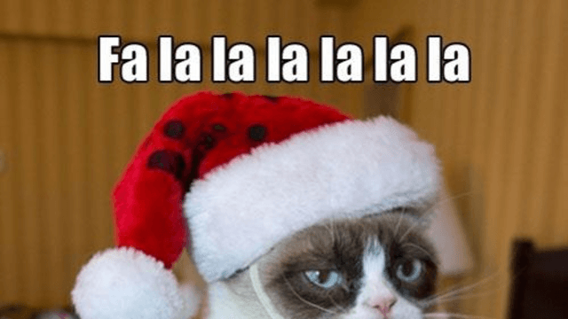 Happy Cat Grumpy Cat