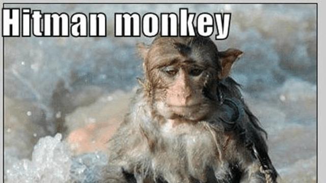Hitman Monkey Owned Com